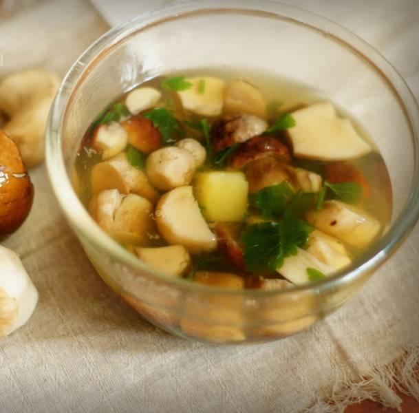 Рецепт суп из свежих подберезовиков и