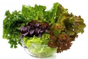 Как стать вегетарианцем без вреда организму - 4