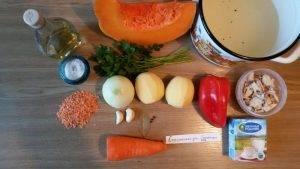 Суп-пюре с тыквой, курицей и чечевицей - 0