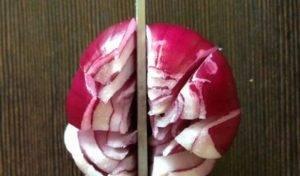 Луковые цветы - 0