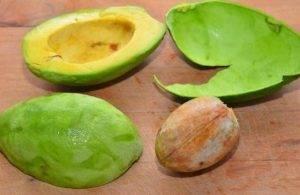 Тимбал из авокадо и тунца - 0