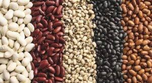 Правильное питание: ТОП 10 самых полезных продуктов - 8