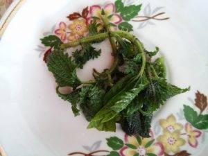 Салат с листьями крапивы и одуванчика - 0