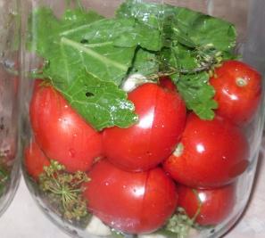 Соленые помидоры - 1