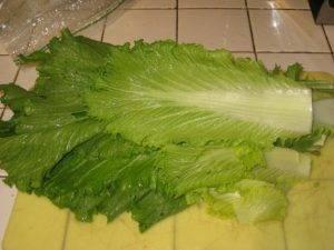 Голубцы из пекинской капусты - 0