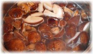 Суп с грибами и баклажанами - 0