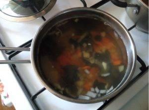 Суп-микс из лесных грибов - 0