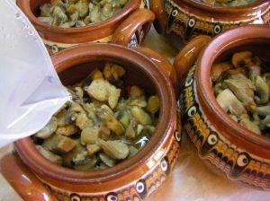 Свинина с грибами и перцем в горшочке - 4