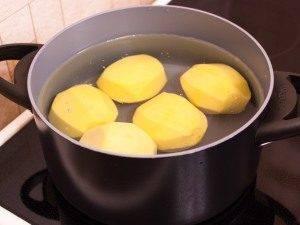 Гнездышки из картофеля с грибами - 0
