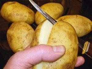 Жульен в картофеле - 0