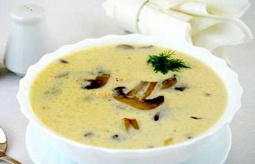 куриный суп с шампиньонами и сыром рецепт с фото