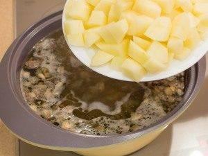 Суп с уткой, рисом и грибами - 5