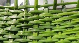 Овощной салат с грибами - 1
