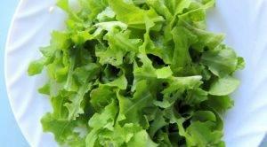 Салат из овощей с сыром - 1