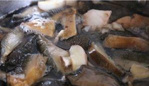 Суп с лесными грибами и хлопьями из гречки - 0