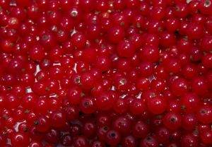 Что приготовить из сезонных ягод в июле - 2