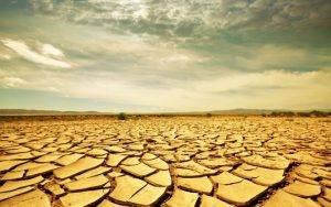 Спасаемся от жары: как правильно пить воду - 0