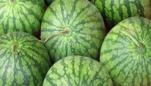 10 признаков нитратных арбузов - 0