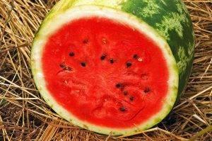 10 признаков нитратных арбузов - 7