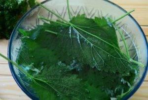Салат из крапивы с яйцом и огурцом - 0