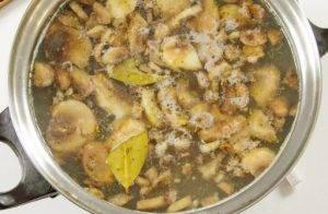 Овсяный суп с грибами - 0