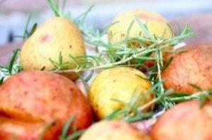 Картофель, запеченный в соли с чесноком и розмарином - 2