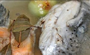 Уха из красной рыбы - 0