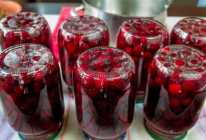 Мамин вишневый компот - 2